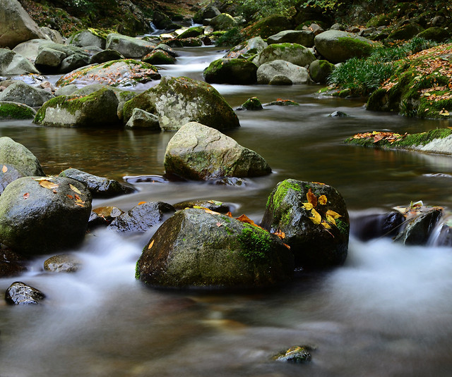 water-river-waterfall-no-person-stream picture material
