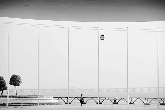 no-person-white-black-photograph-black-white picture material