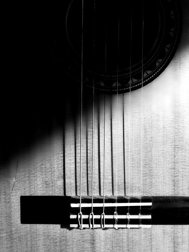 no-person-guitar-instrument-music-sound picture material