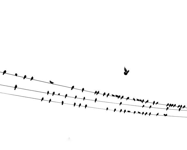 note-line-soprano-sound-clef picture material
