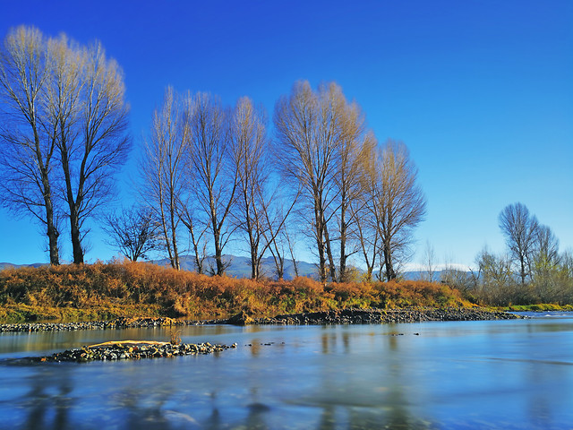 fall-tree-landscape-lake-no-person picture material