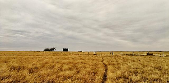 field-sky-prairie-farm-crop picture material