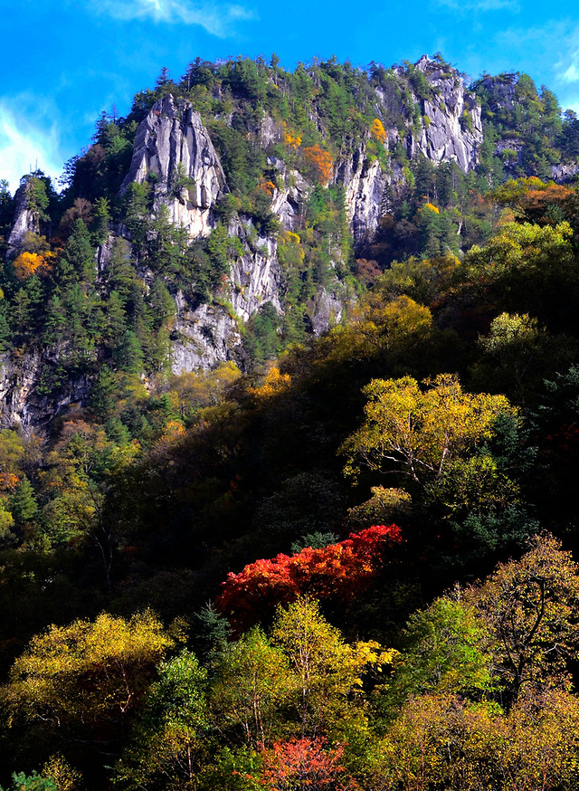 fall-landscape-nature-tree-travel 图片素材
