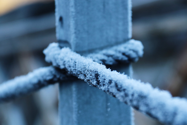 rope-frost-winter-no-person-snow picture material