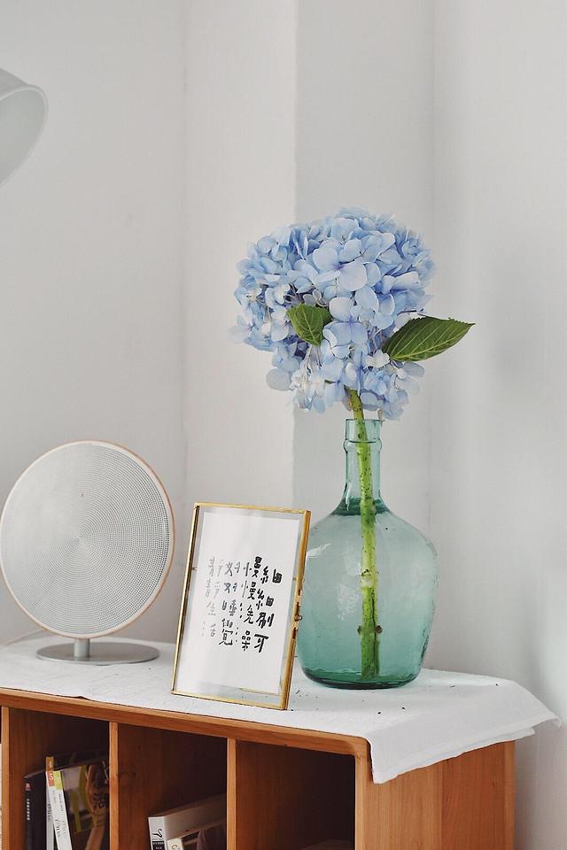 no-person-vase-blue-contemporary-interior-design picture material