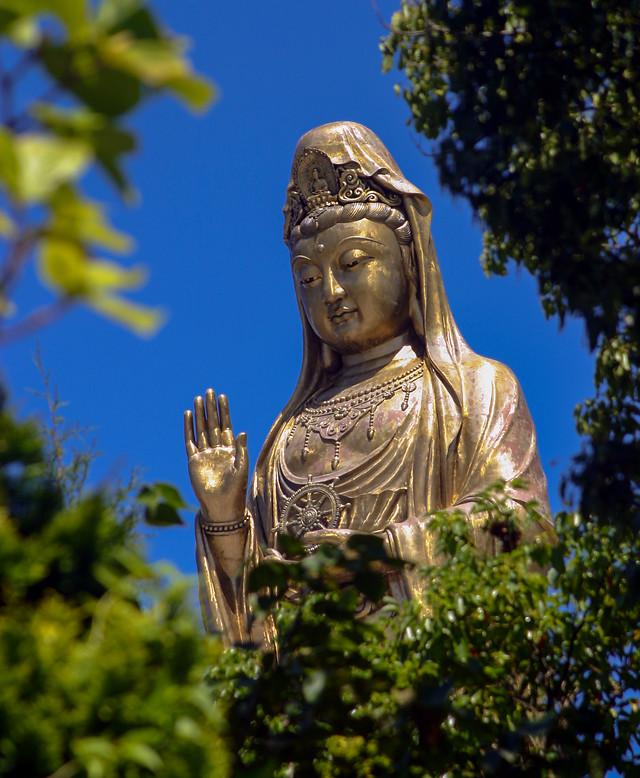statue-sculpture-buddha-religion-travel picture material