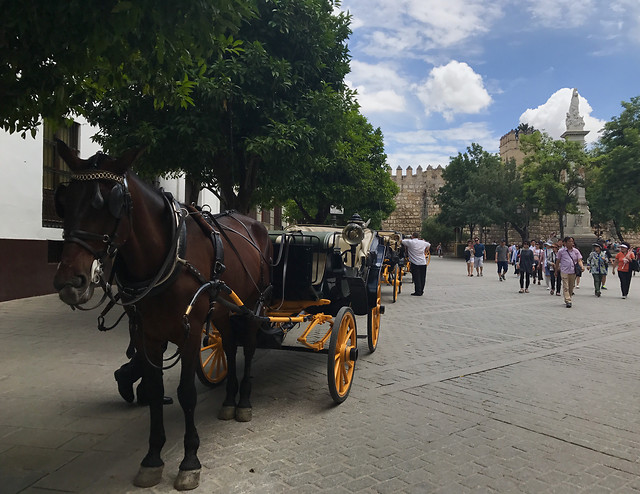 carriage-people-cavalry-horse-street picture material