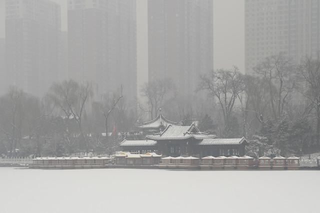 winter-fog-storm-weather-snow 图片素材