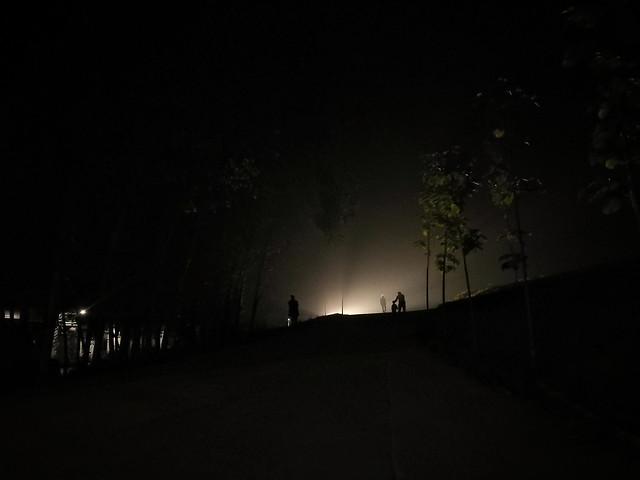light-landscape-fog-night-silhouette picture material