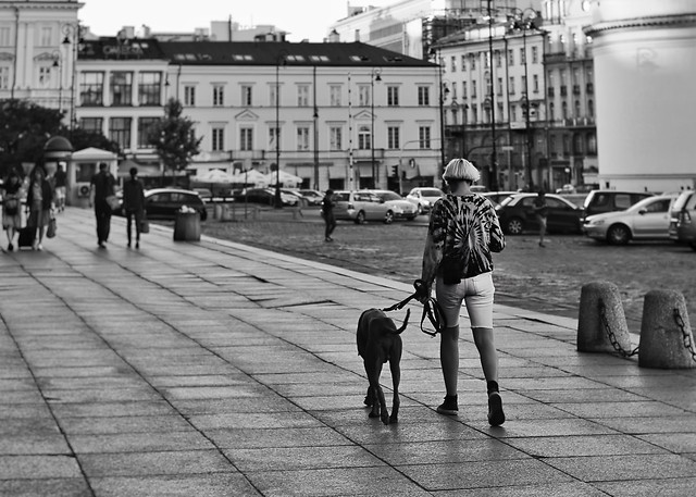 people-street-adult-woman-road picture material
