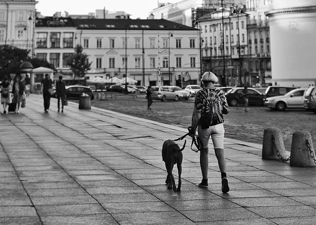 people-street-adult-woman-road 图片素材