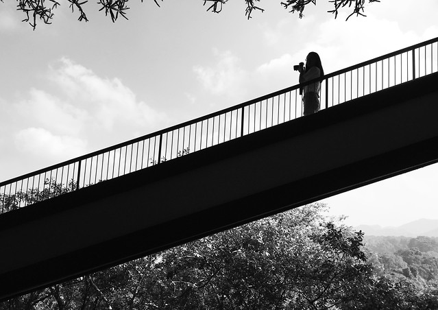 bridge-sky-water-no-person-black 图片素材