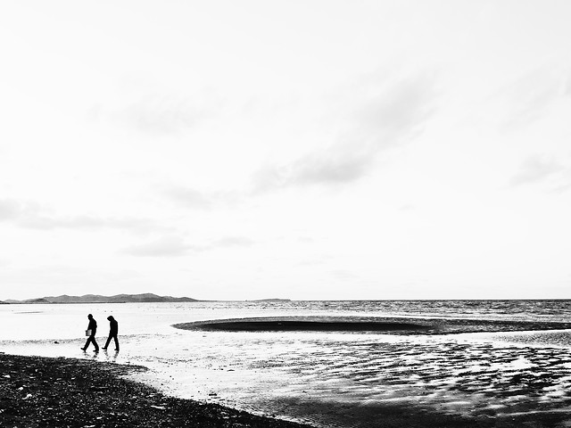 monochrome-beach-sea-water-people picture material