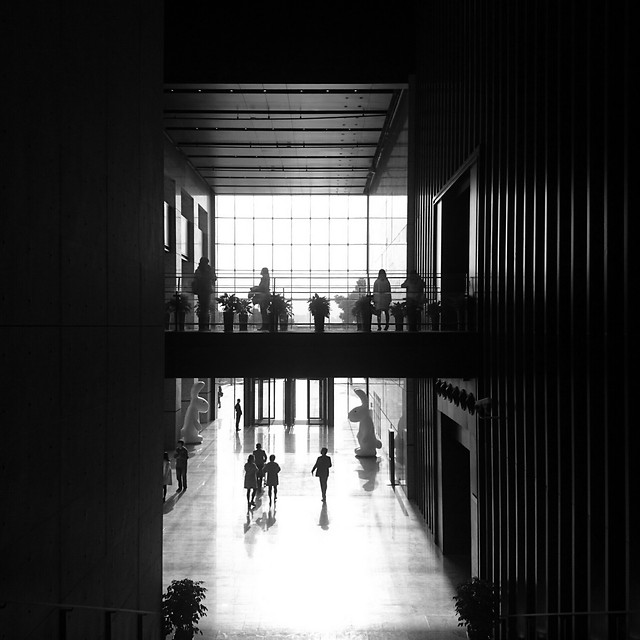 monochrome-dark-light-shadow-city picture material