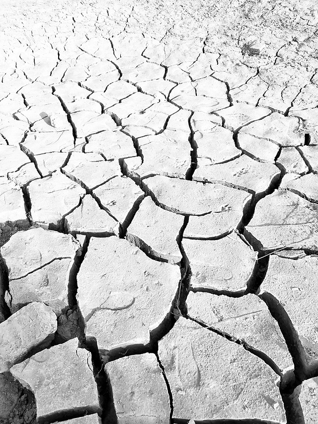 drought-arid-ground-wasteland-dust picture material