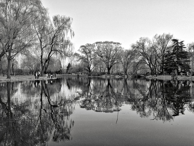 reflection-water-monochrome-lake-landscape 图片素材
