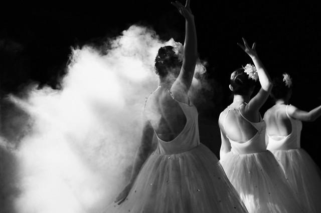 dancer-monochrome-girl-ballet-dancer-little-swan picture material