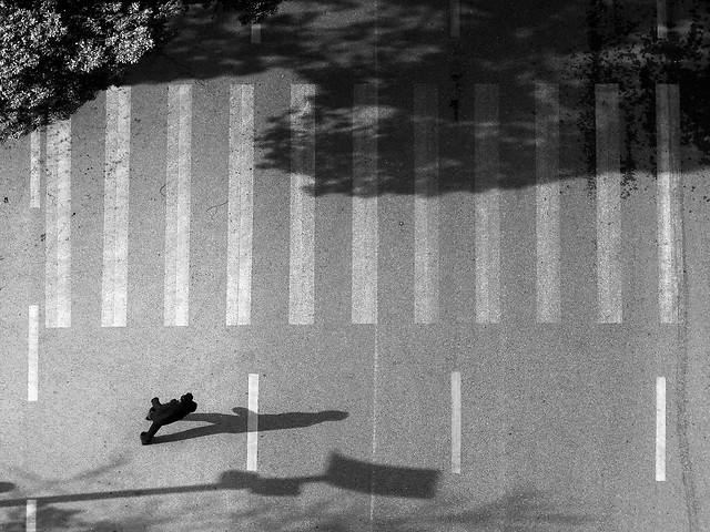 white-black-photograph-black-white-monochrome-photography 图片素材