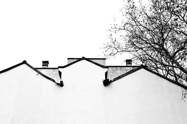 black-no-person-winter-black-white-monochrome 图片素材