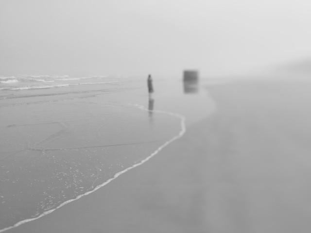 beach-landscape-sea-ocean-water picture material