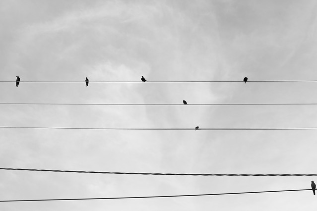 wire-sky-high-electricity-no-person picture material