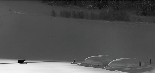 snow-winter-landscape-lake-ice 图片素材