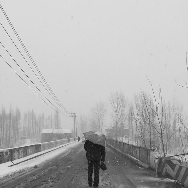 transportation-system-fog-people-vehicle-road 图片素材