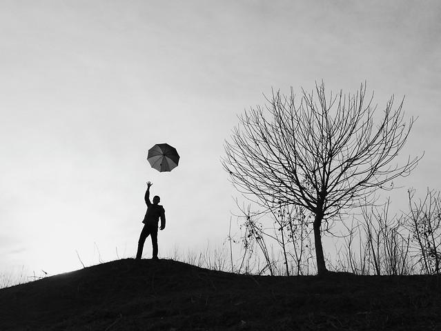 people-tree-sky-silhouette-black 图片素材