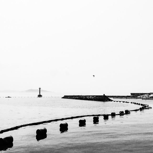 water-sea-no-person-beach-black-white 图片素材