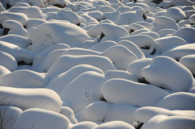 no-person-snow-winter-cold-nature picture material