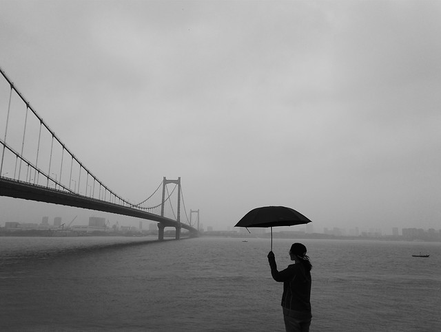 water-bridge-rain-people-dawn picture material