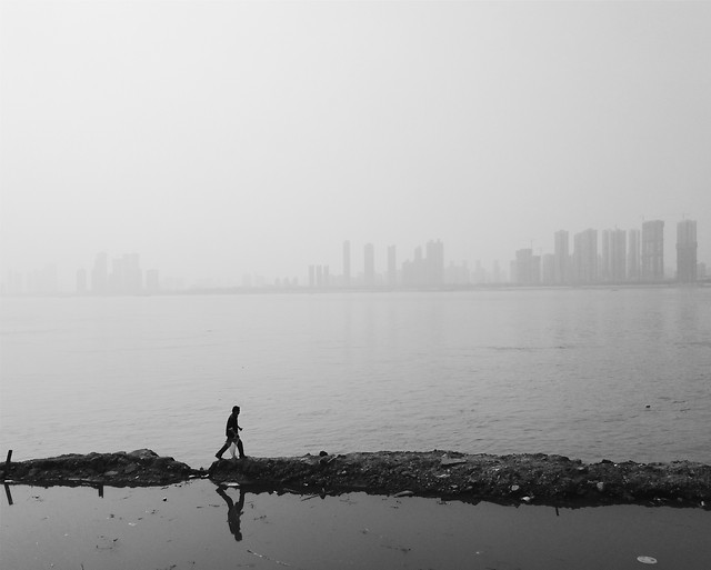 water-fog-dawn-people-mist picture material