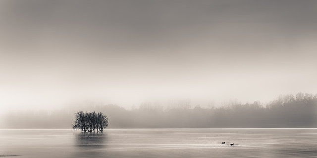 fog-nature-mist-water-sunset picture material