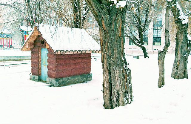 snow-winter-wood-house-tree picture material