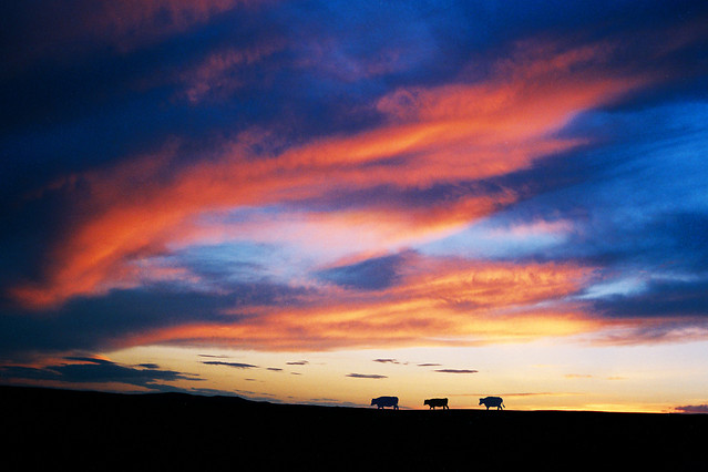 sunset-dawn-sky-dusk-evening picture material