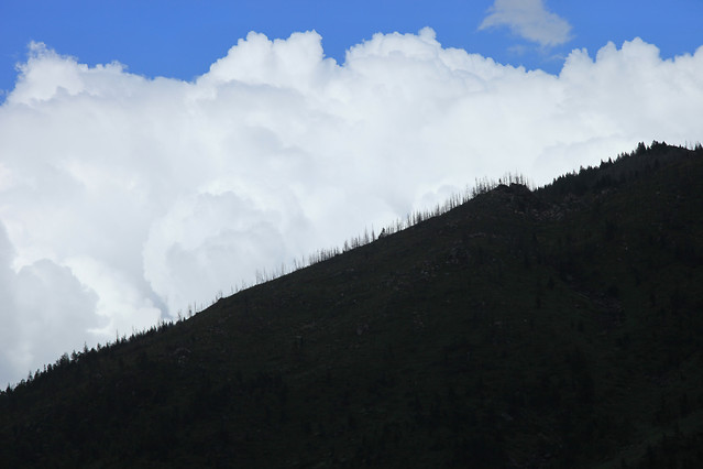 landscape-mountain-tree-sky-cloud picture material