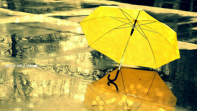 umbrella-rain-water-no-person-yellow picture material