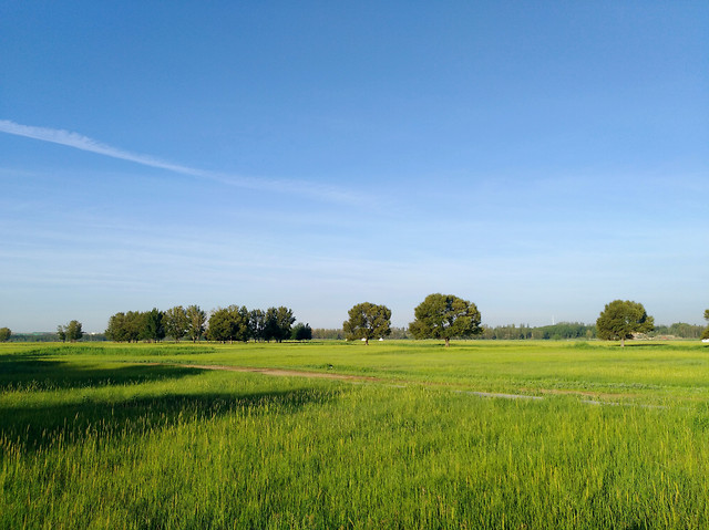 landscape-no-person-agriculture-countryside-grass picture material