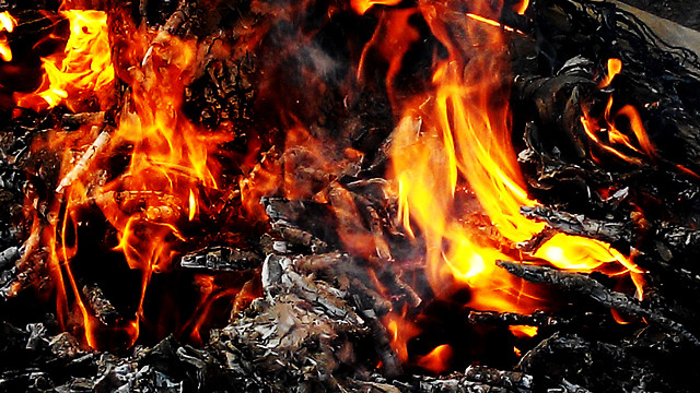 flame-campfire-bonfire-fireplace-heat picture material