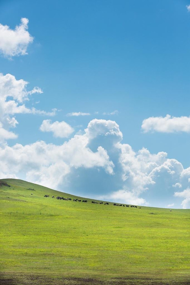sky-landscape-no-person-grassland-nature 图片素材