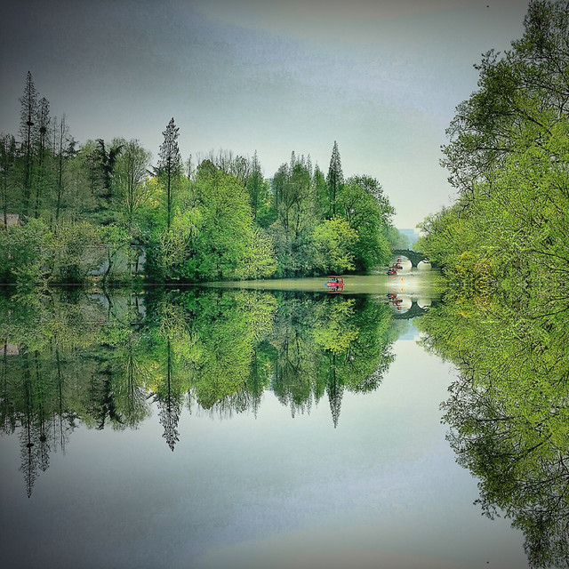 reflection-lake-tree-water-river picture material