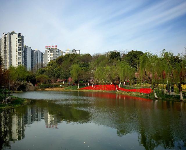 water-river-no-person-architecture-reflection 图片素材