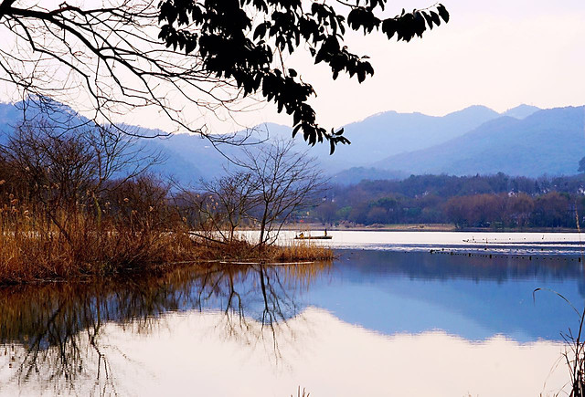 lake-water-landscape-tree-reflection picture material