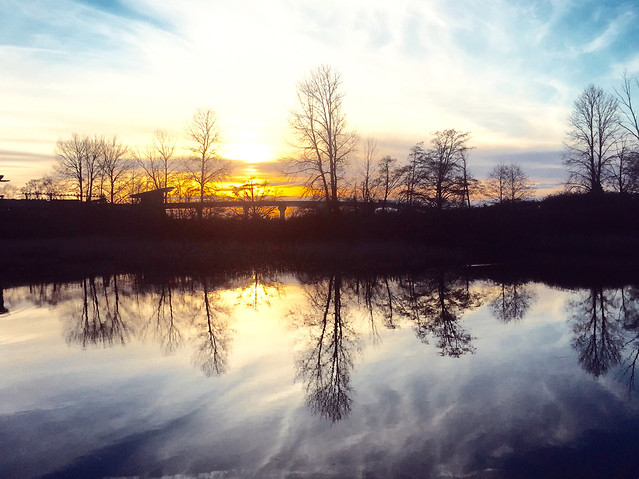 dawn-landscape-tree-sunset-reflection picture material