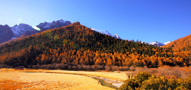 no-person-outdoors-nature-fall-travel 图片素材