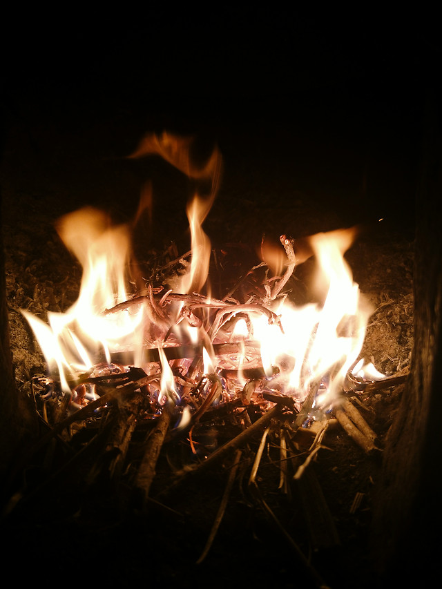 flame-hot-bonfire-heat-campfire 图片素材