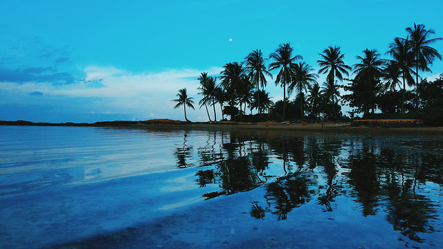 no-person-tropical-water-beach-exotic picture material