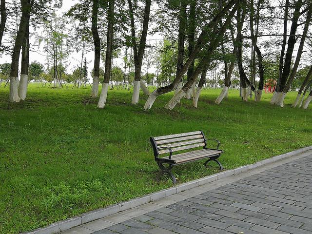 bench-park-landscape-wood-grass picture material