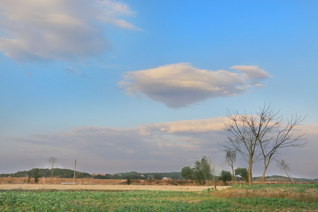 landscape-no-person-sky-nature-agriculture picture material