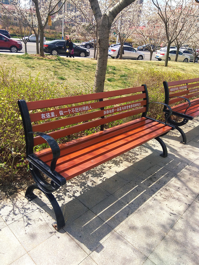 bench-seat-park-wood-garden picture material